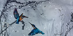 Winter's Tale by Kay Davenport - Original Painting on Box Canvas sized 32x16 inches. Available from Whitewall Galleries